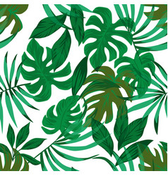 tropical leaves green seamless white background vector image