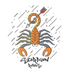 flat designed scorpion vector image