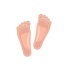 Healthy skin feet icon vector