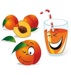 peach tea or juice vector image