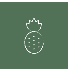 Pineapple icon drawn in chalk vector image