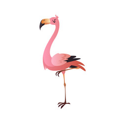 pink flamingo cute beautiful jungle or zoo vector image