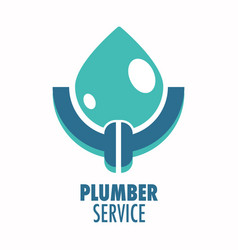 plumber service isolated icon plumbing repair vector image
