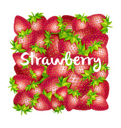 strawberry square background vector image