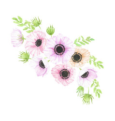 Watercolor hand drawn anemone flower bouquet vector