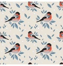 Bullfinches with foliage and snow pattern vector image vector image
