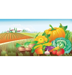 landscape with a group of vegetables vector image vector image