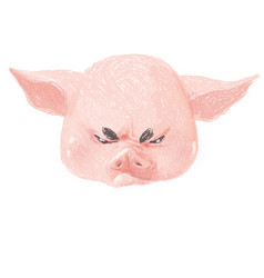 adorable pig character is angry cute little vector image