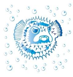 Balloonfish vector image