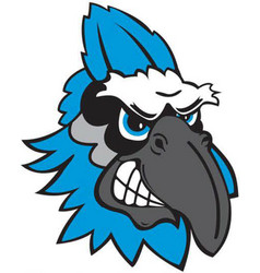 Blue jay head sports logo mascot vector