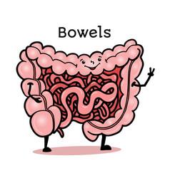 funny human gut bowel intestines character vector image
