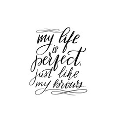 My life is perfect just like my brows vector