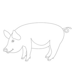 pig lining draw profile vector image