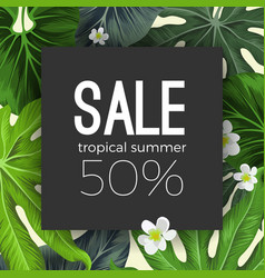 special summer sale card with exotic plants on vector image