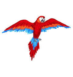 Stylized of parrot image for design vector