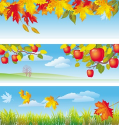 Three autumn banners vector