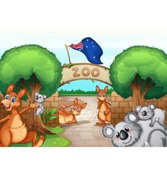 Zoo scene vector