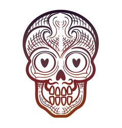 decorative calavera or skull isolated icon vector image