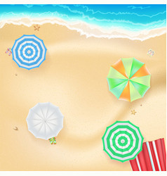 summer background banner with seashore colored vector image vector image