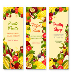 Banners of exotic fruits for tropical vector