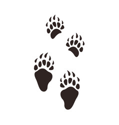 bear footprints animal paw silhouette flat vector image