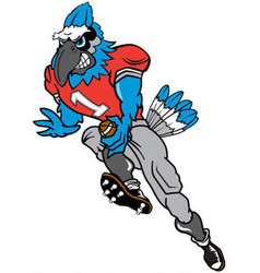 Blue jay football sports logo mascot vector