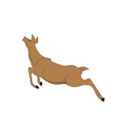 Deer runs vector