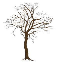 Isolated tree vector