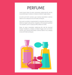 perfume pattern color card vector image