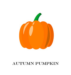Pumpkin isolated flat and cartoon design style vector