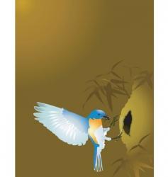 Weaver bird vector