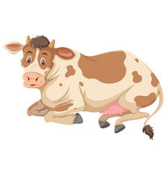 a cow on white background vector image