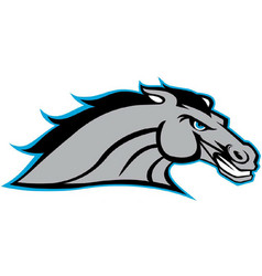 Bronco head sports logo mascot vector