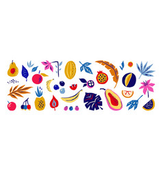 exotic fruits and flowers doodle tropical plants vector image