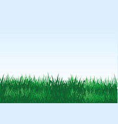 green grass on a blue background vector image