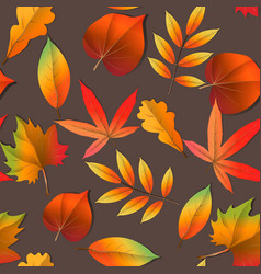 wallpaper background beautiful cute trendy bright vector image