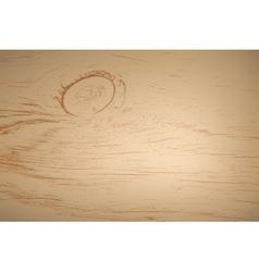 Wooden Grunge Texture vector