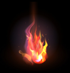 isolated realistic orange and red fire flame on a vector image