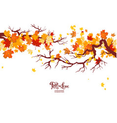 Autumn nature branch vector