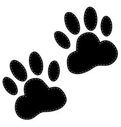 Dog paws following on a white background vector