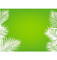 Palm leaf background vector image