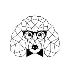 Polygonal poodle dog in fashion glasses vector