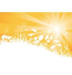 sunny meadow vector image