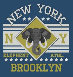 new york brooklyn sport vector image vector image