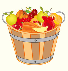 Bucket with fruit and berry vector