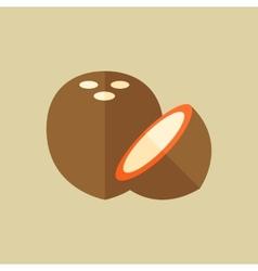 Coconut Food Flat Icon vector