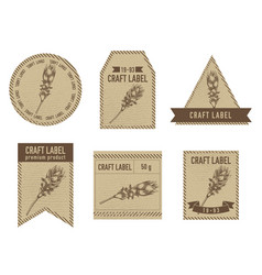 craft labels with turmeric vector image