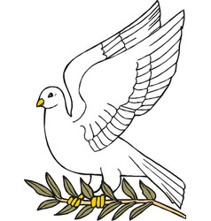 dove peace icon peace concept vector image