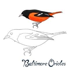 Educational game coloring book bird vector
