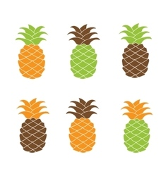 Flat pineapple icon set colorful vector